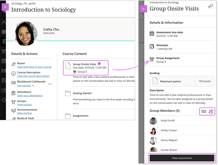 example course screen highlighting the course content area and group assignment option
