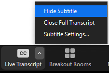 hide subtitles control interface