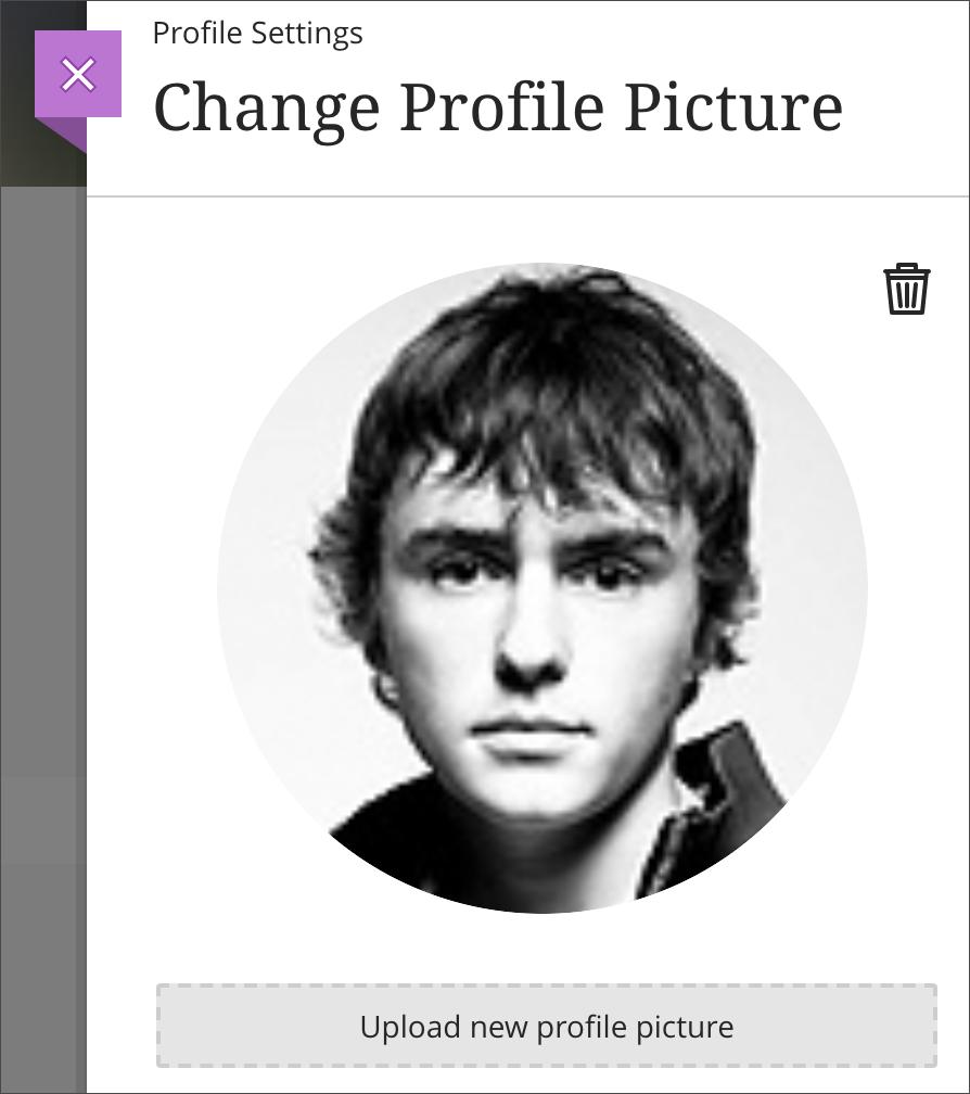Upload profile picture