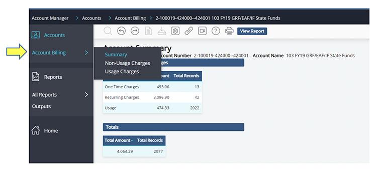 locate billing summary