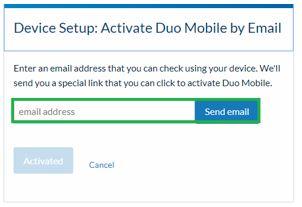 enter email for activation link