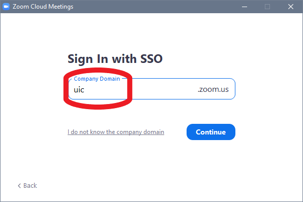 sign in with S S O screen showing the Company Domain as U I C before you click continue button