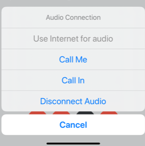 audio connection options screen