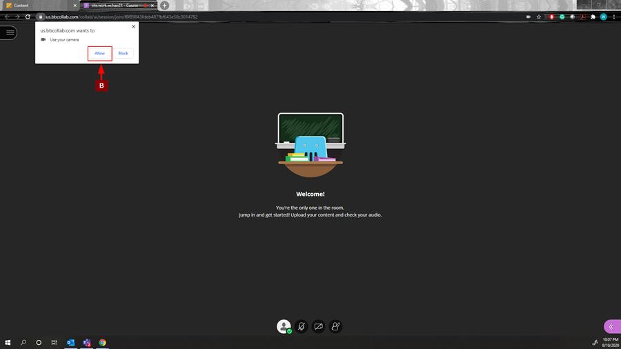allow webcam button