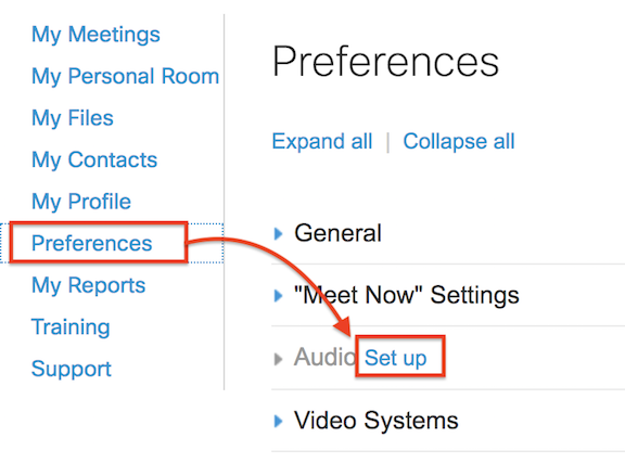 screen showing Preferences and Audio set up