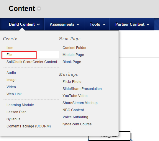 highlighting the file field in the Content screen